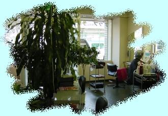 ZAAP HAIR STUDIOのサムネイル画像